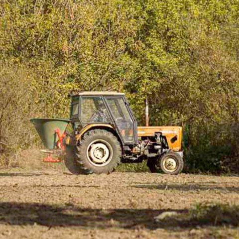 zakładnie i pielęgnacja łąki